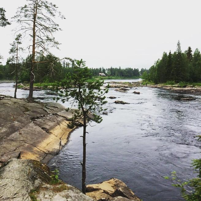 koitelinkoski finland